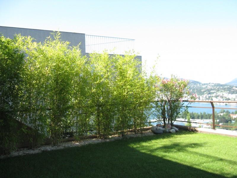 Giardino zen bamboo grande giardino zen in salotto zen - Accessori giardino zen ...